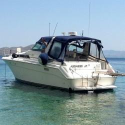Sea Ray 440