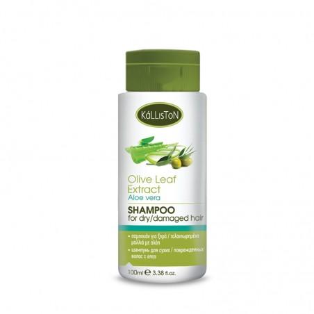 Kalliston Shampoo, 100ml